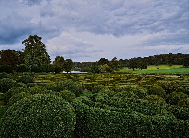 Hecke in England